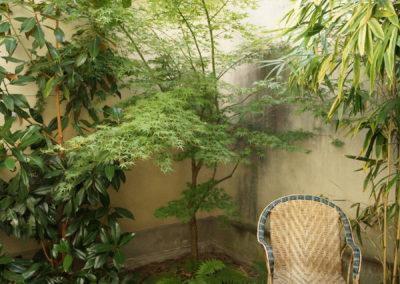 Rotin et bambous