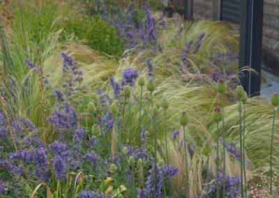 Un jardin écologique pour une maison BBC à Fondettes